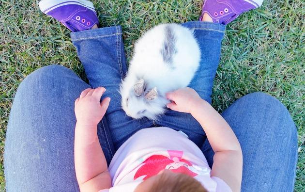 amelie-bunny-top