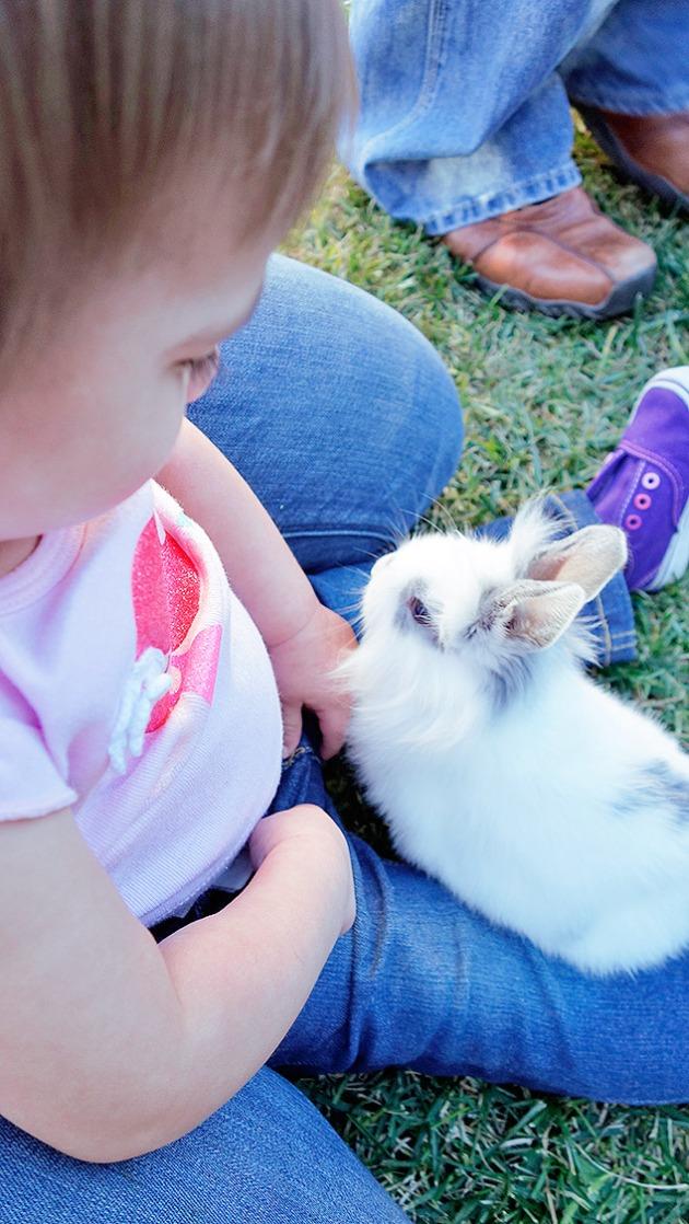 bunny-in-lap