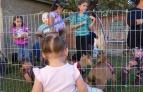 petting-zoo-kids