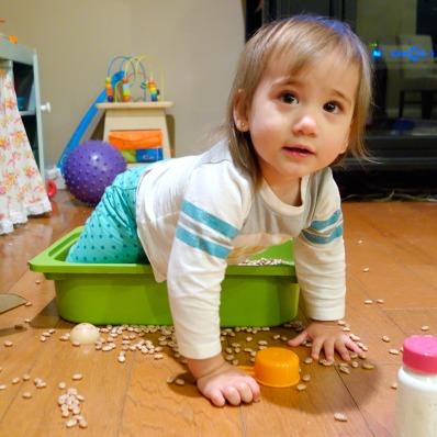 crawling-bin-sq
