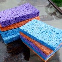 colored-sponges