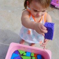 discovering-sponge-shapes